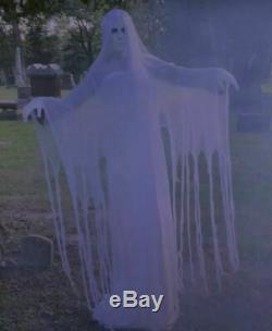 ANIMATED RISING GHOST WOMAN Halloween Prop HAUNTED HOUSE LADY OF THE GRAVE