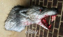 Bloody grey werewolf wall mount /with glowing LED eyes vampire haunted house goth