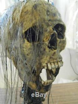 HALLOWEEN HORROR MOVIE PROP Realistic Human Corpse Head CREEPY CAROL