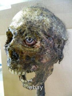 HALLOWEEN HORROR MOVIE PROP Realistic Human Corpse Head One Eye Eddie