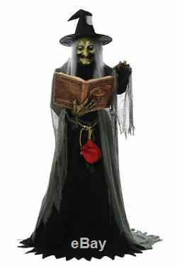 Halloween Animated Spell Speaking Witch Life Size Prop Haunted House Animatronic
