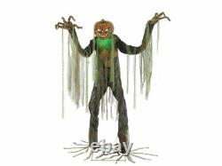 NEW Root Of Evil Animated Halloween Prop Haunted House Pumpkin Scarecrow Talking