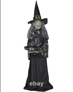 Nib 2009 Gemmy Life Size Animated Talking Halloween Witch With Tray For Candy