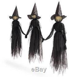 Set Of 3 Lighted Glowing Black Witches Witch Coven Outdoor Halloween