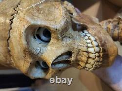 Skulltronix animatronic head skull halloween