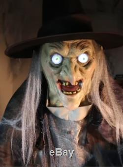 VIDEO! LifeSize ANIMATED Lunging Haggard Witch Halloween PROP HAUNTED Spirit